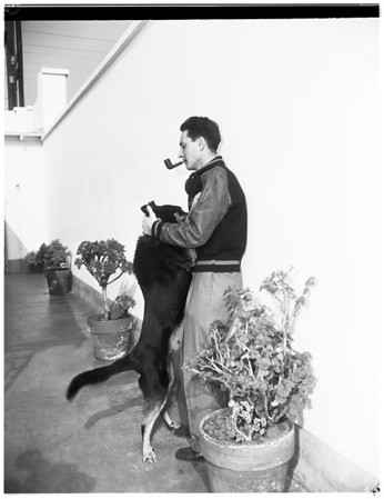 Steals his own dog from the pound where he was incarcerated because his owner refuses to leash him, 1952