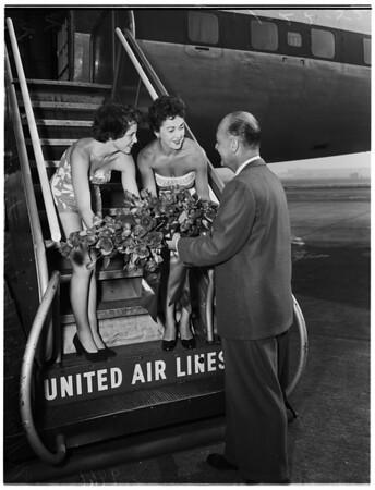 """""""Down Under"""" beauties, 1952"""