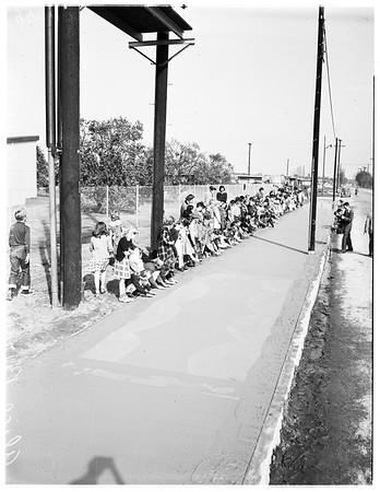 Hands in cement, 1952