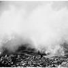 Redondo waves, 1952