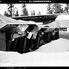 Snow at Big Bear Lake, 1952