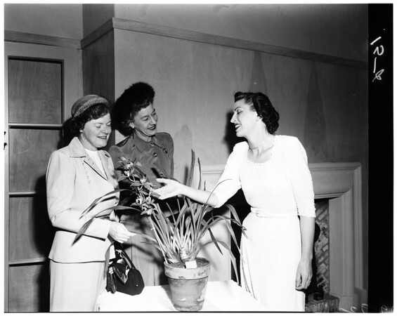 Beverly Hills Women's Club plans party, 1952