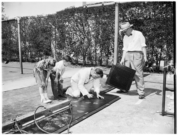 Playground mat (for use under swings), 1952