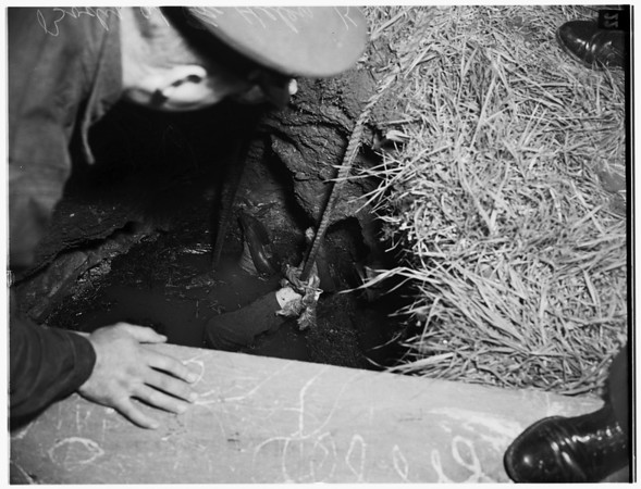 Woman falls in cesspool (dies), 1952