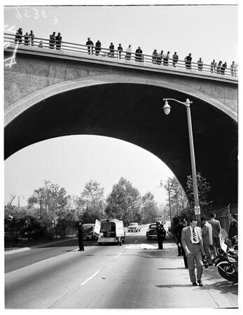 Arroyo Seco Leaper, 1952