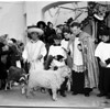 Animal blessing (Olvera Street), 1952
