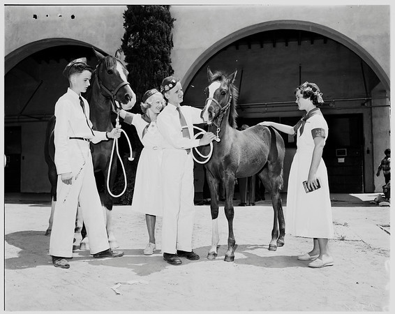 Four-H Clubbers show prize animals, 1952