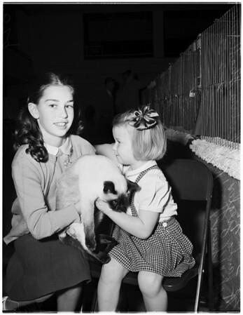 Cat show (Long Beach), 1952