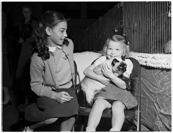 Cat show (Long Beach), 1952