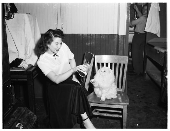 Cats, 1952