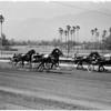 Santa Anita harness races, 1961