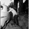 Attempt rapist shot (Lindley Avenue and Nordhoff Street, Northridge), 1952.