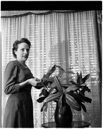 Flower Arrangements, 1958