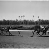 Horse races at Hollywood Park, 1961