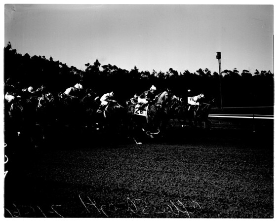 Hollywood Park races (gold cup), 1961