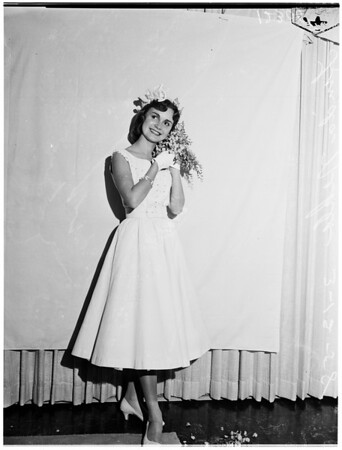 Wisteria Queen, 1958