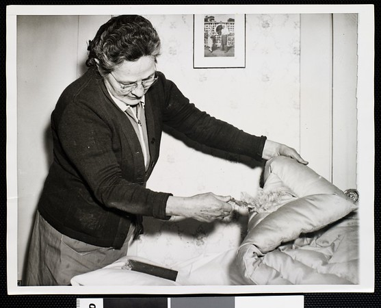 Woman demonstrates a damaged quilt, 1942