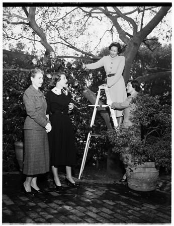 Pasadena flower show, 1952