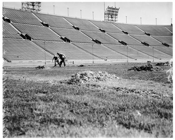 Coliseum layout of field (baseball), 1958