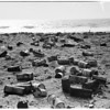 Litterbug feature (tin can beach), 1957