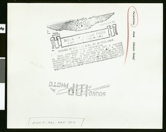 Stern Gang picket, 1948