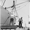 Harbor series (John McDowell), 1953