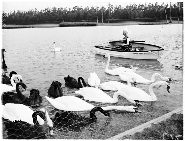 Goose girl (Hollywood park), 1958