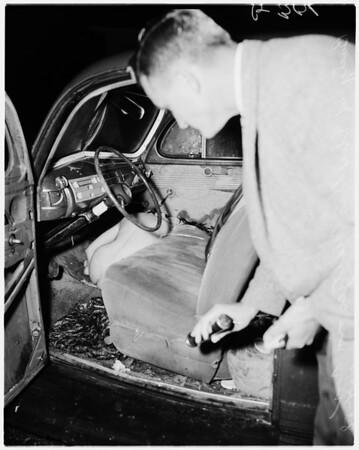 Murder of Phyllis Meltzer, 1958