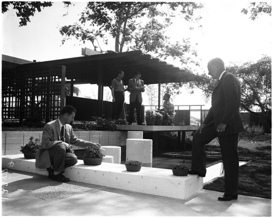 Los Angeles country arboretum, 1958