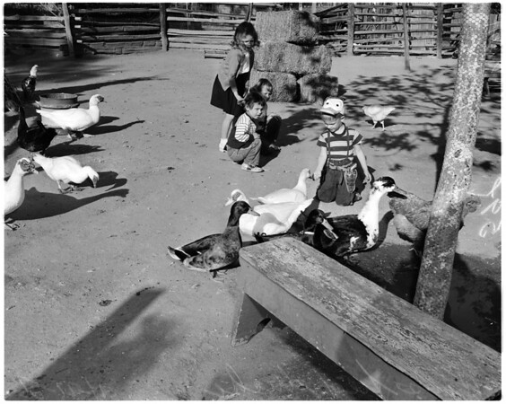Griffith Park Zoo, 1956