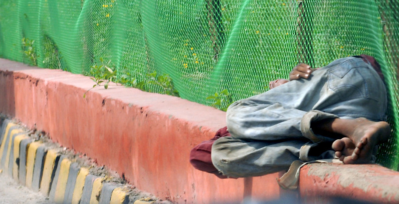 Asleep next to the road on a concrete fence.