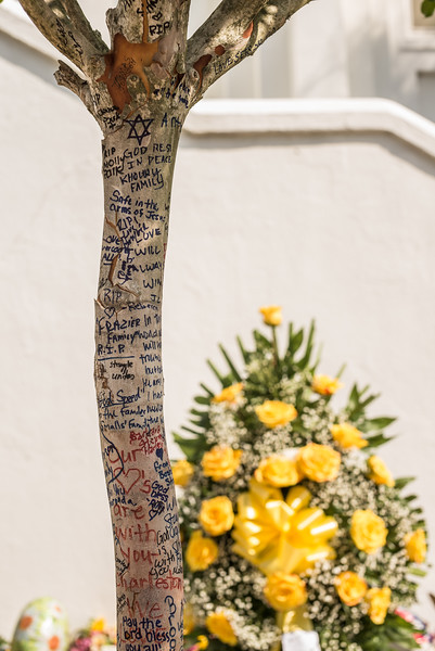The trees in front of Mother Emmanuel have been tattooed with well wishers prayers.