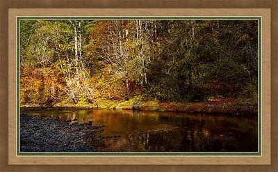 Wood Frame double matted