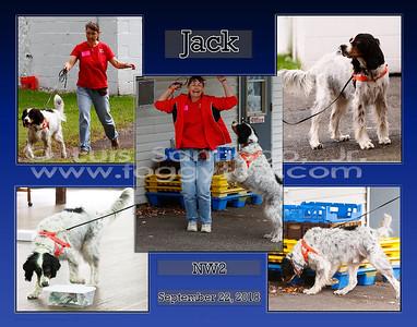 11x14_15Jan2019_JackNW1-draftbluegrad
