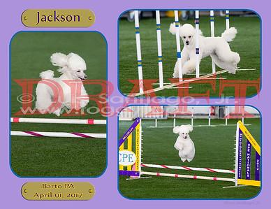 85x11x5-Jackson-v3