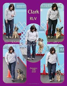 DRAFT-WEB-85x11-vert-Clark-RLV
