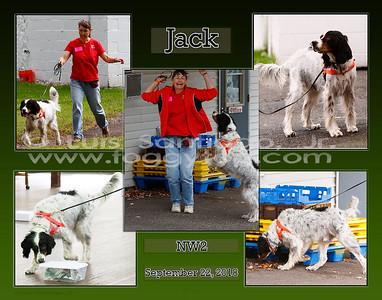 11x14_15Jan2019_JackNW1-draftgreengrad