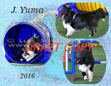 BobY_2016_Yuma-v2-85x11x3