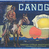 Facsimile of Sunkist & Canoga Citrus Association crate label, ca.1928