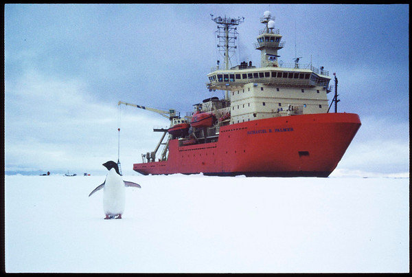 "Icebreaker ""Nathanial B. Palmer"", in the Antarctic, ca.1998"