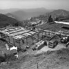 Birdseye view of the construction site of the Julius Shulman House and Studio, Los Angeles, 1949-1950