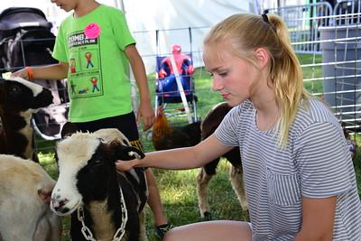 Ribfest 2016 - Naperville, Illinois - Petting Zoo