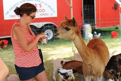 Ribfest 2017 - Naperville, Illinois - Petting Zoo