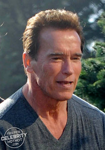 EXC: I'll Be Back…For That Christmas Tree! Arnold Schwarzenegger Picks Out His Festive Fern