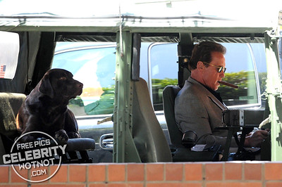 EXCLUSIVE: Arnold Schwarzenegger Smoking a Cigar Wearing Cool Sunglasses, LA
