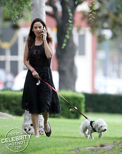 EXCLUSIVE: Natalie Imbruglia Takes Her Dog Mr. Wilson For A Walk In Smart See-Through Dress!
