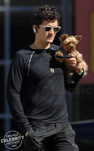 Orlando Bloom + Puppy = Adorable