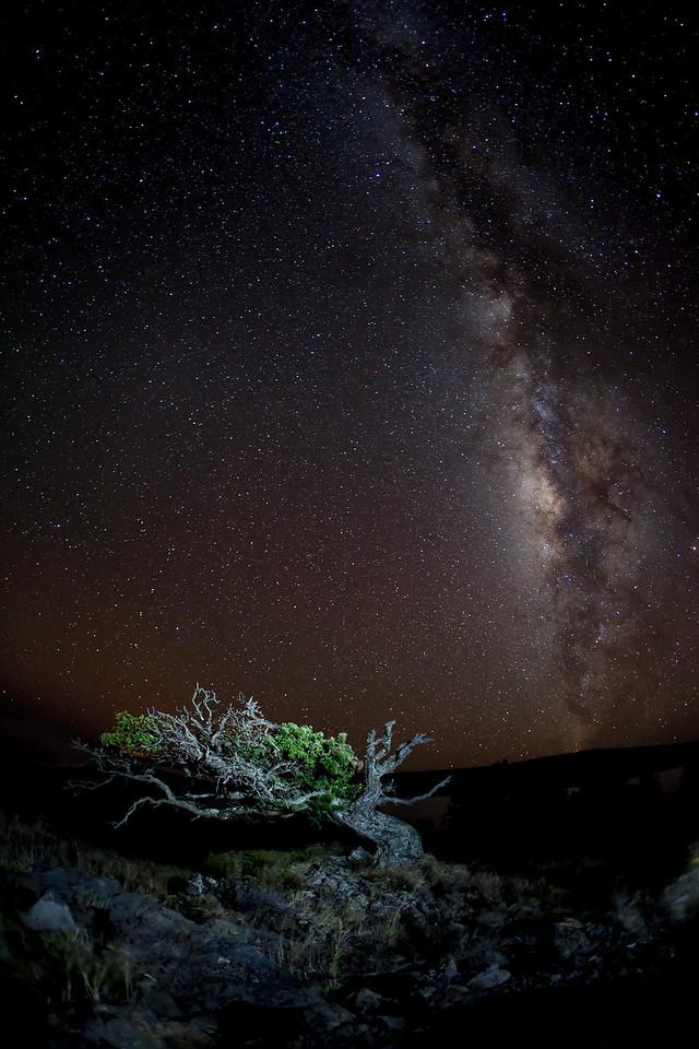 Mauna Loa Milky Way.