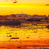 Sunset near Crystal Sound in the Antarctic Peninsula