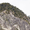 "Conguillio National Park, Araucania, Chile © Claudio F. Vidal, Far South Expeditions, Chile |  <a href=""http://www.farsouthexpeditions.com"">http://www.farsouthexpeditions.com</a>"